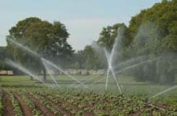 Namakanje kmetijskih površin s stabilnimi sistemi
